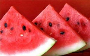 6 loại hạt trái cây dùng làm thuốc hữu ích