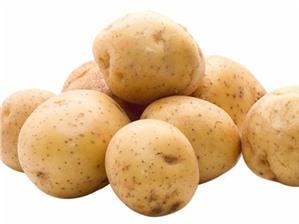 Cách làm khoai tây chiên lắc phô mai ngon chẳng kém ngoài hàng